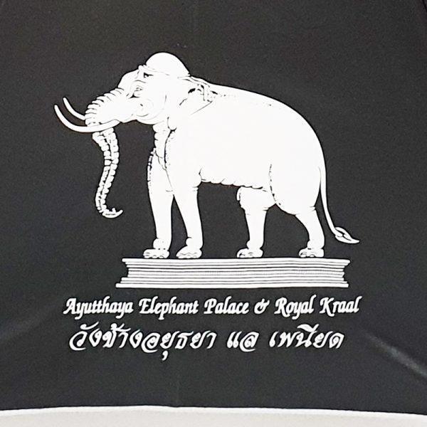 ร่มสีดำ สกรีนร่ม งานวังช้าง